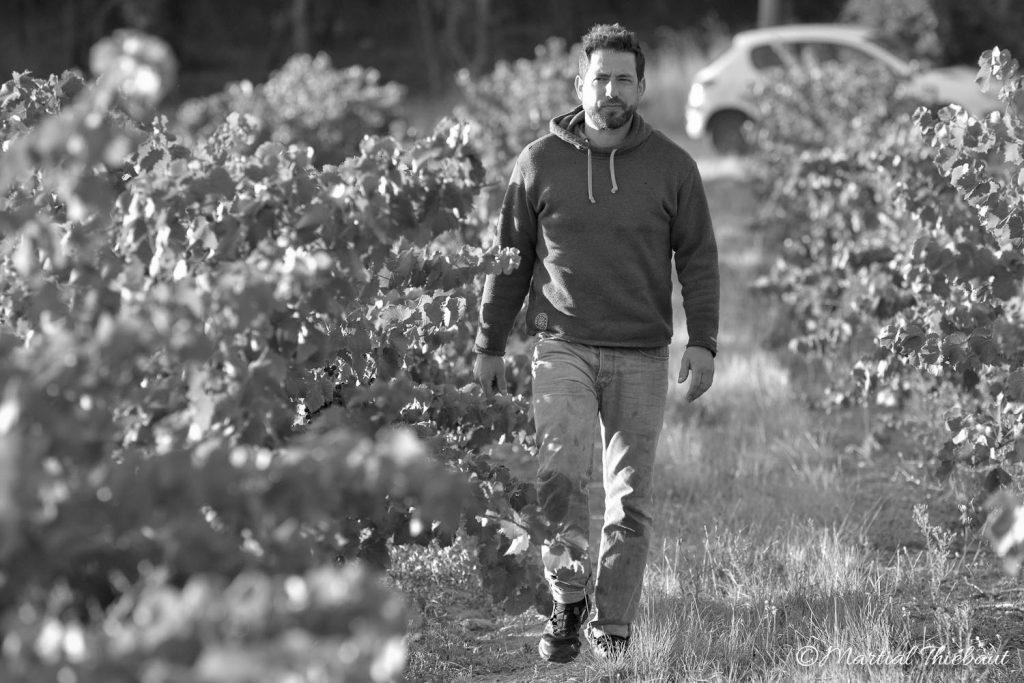 Domaine-Beauchamp-wine-2017-light-30